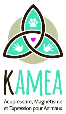 35 logo kamea