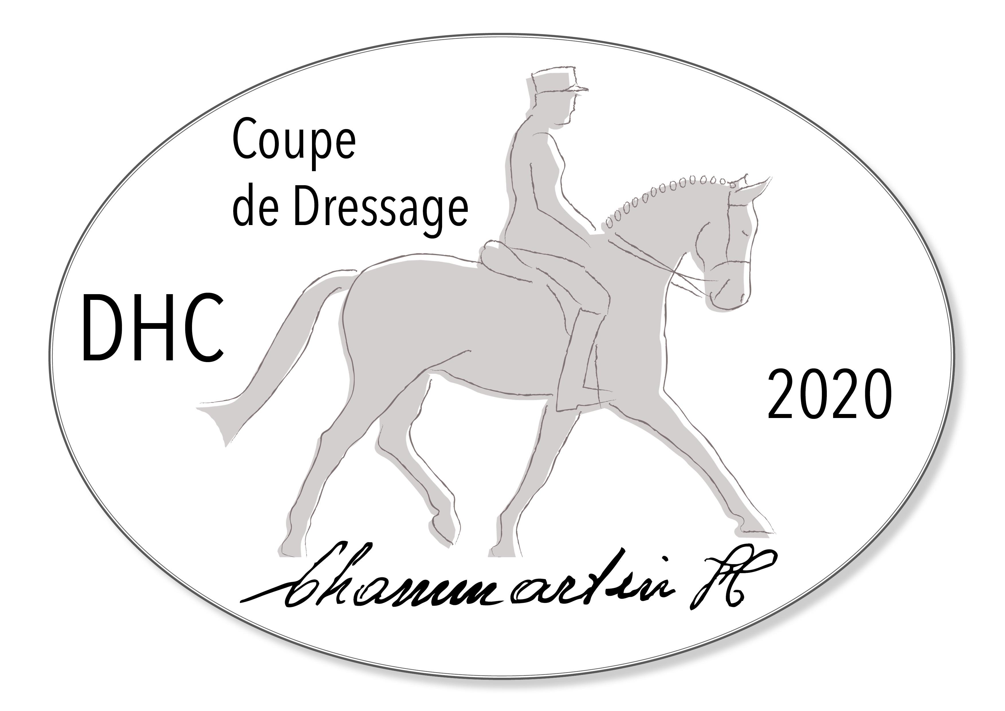 logo DHC 2020